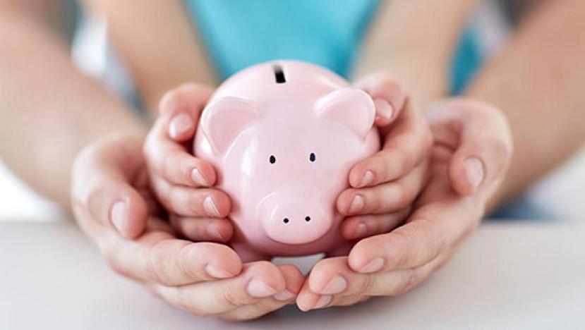 С 1 января 2020 года установлена ежемесячная денежная выплата на ребенка